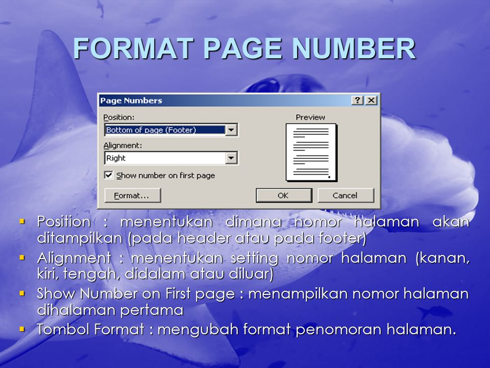 FORMAT PAGE NUMBER Position : menentukan dimana nomor halaman akan ditampilkan (pada header atau pada footer)