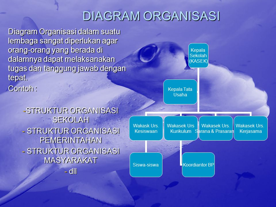 DIAGRAM ORGANISASI