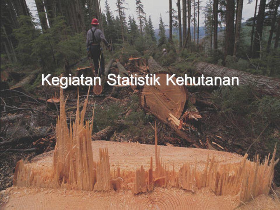 Kegiatan Statistik Kehutanan