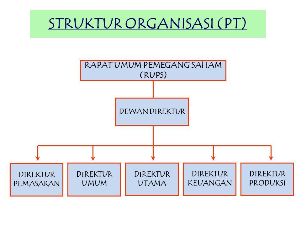 STRUKTUR ORGANISASI (PT)