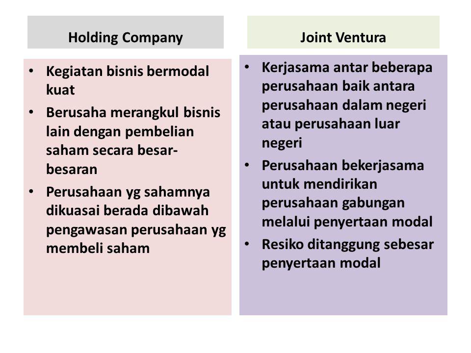 Holding Company Joint Ventura. Kerjasama antar beberapa perusahaan baik antara perusahaan dalam negeri atau perusahaan luar negeri.