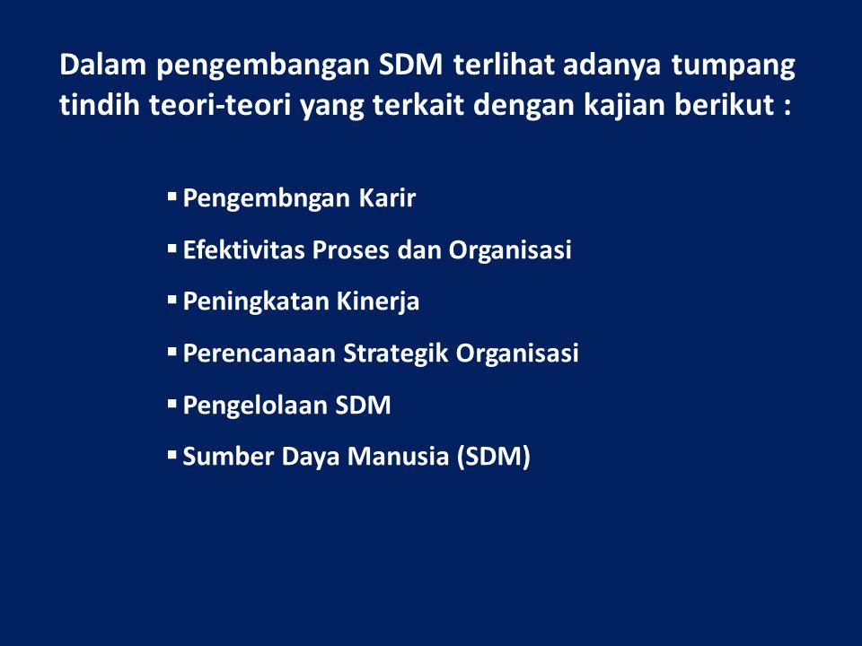 Dalam pengembangan SDM terlihat adanya tumpang