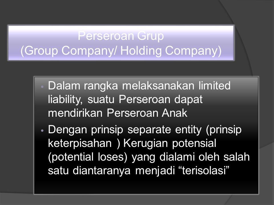 Perseroan Grup (Group Company/ Holding Company)