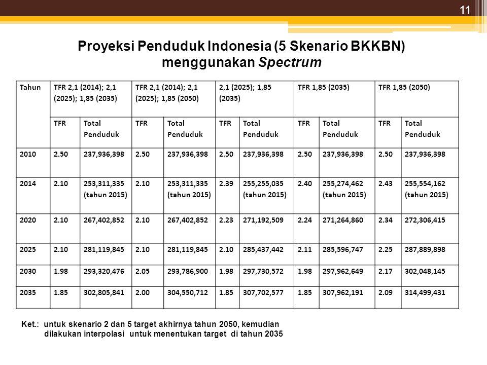 Proyeksi Penduduk Indonesia (5 Skenario BKKBN)
