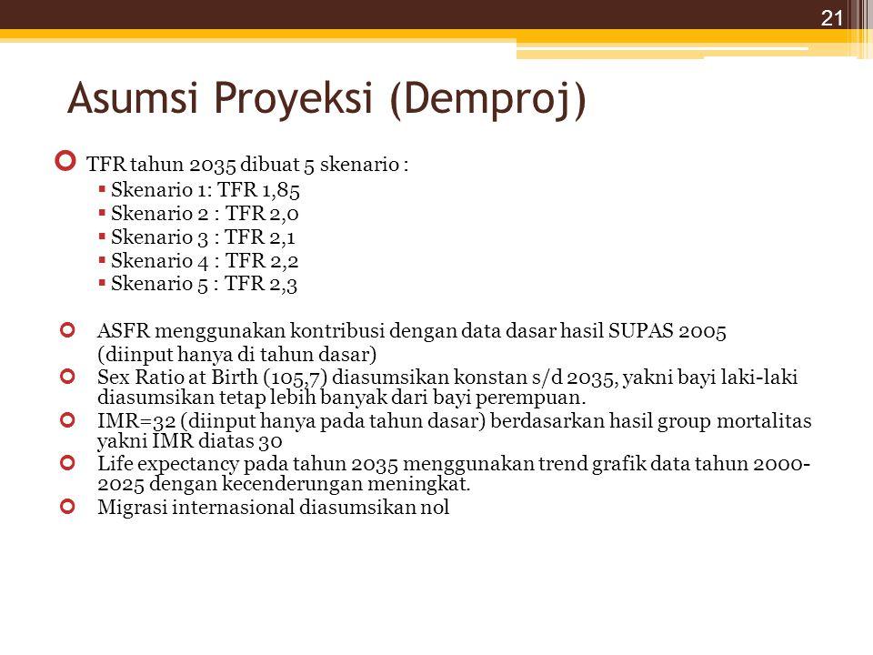 Asumsi Proyeksi (Demproj)