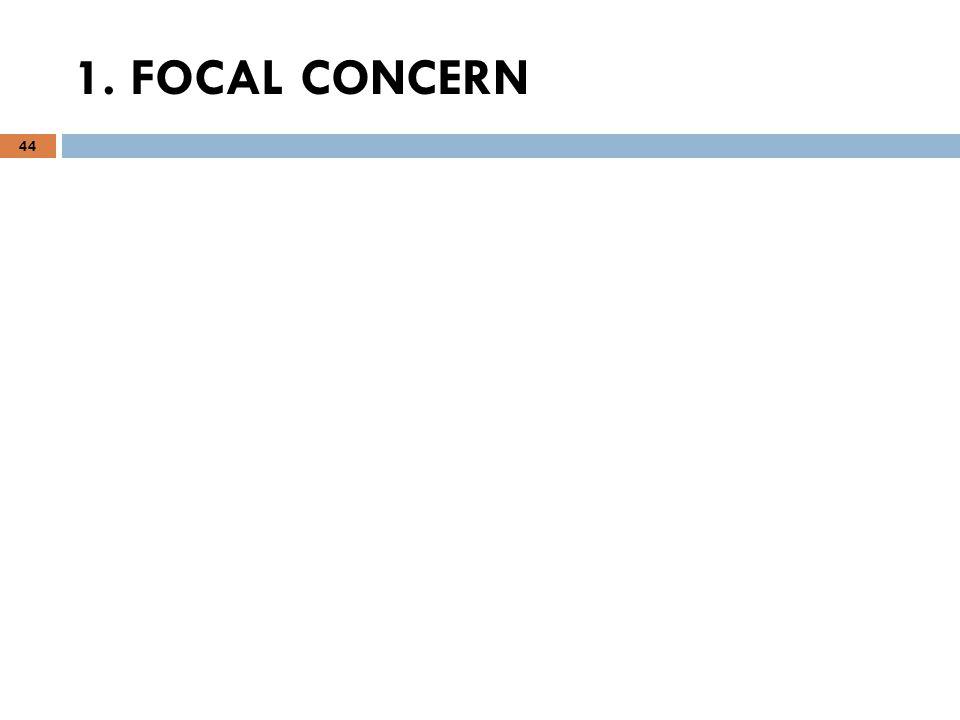1. FOCAL CONCERN