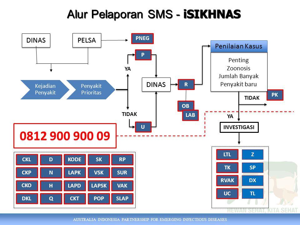 Alur Pelaporan SMS - iSIKHNAS