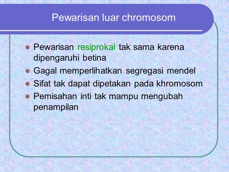 Pewarisan luar chromosom
