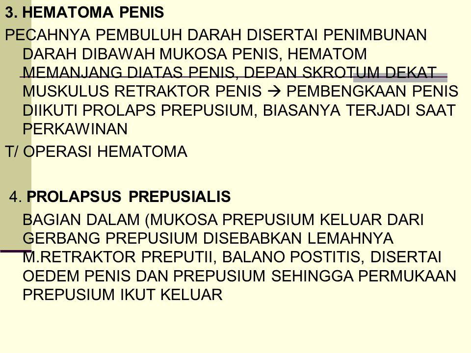 3. HEMATOMA PENIS