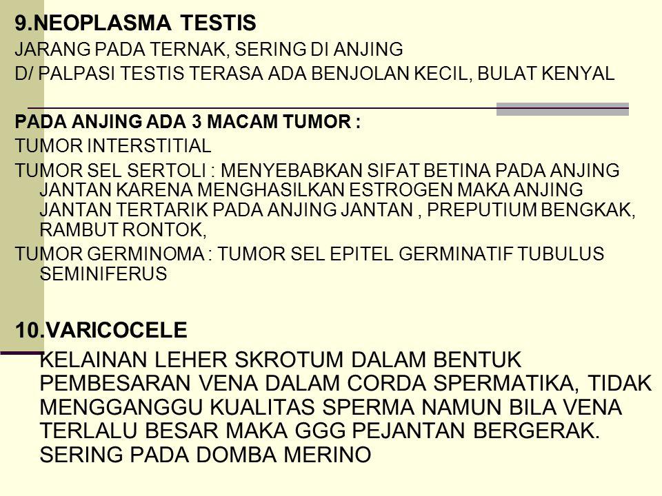 9.NEOPLASMA TESTIS 10.VARICOCELE