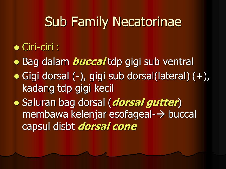 Sub Family Necatorinae