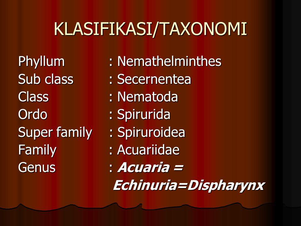 KLASIFIKASI/TAXONOMI
