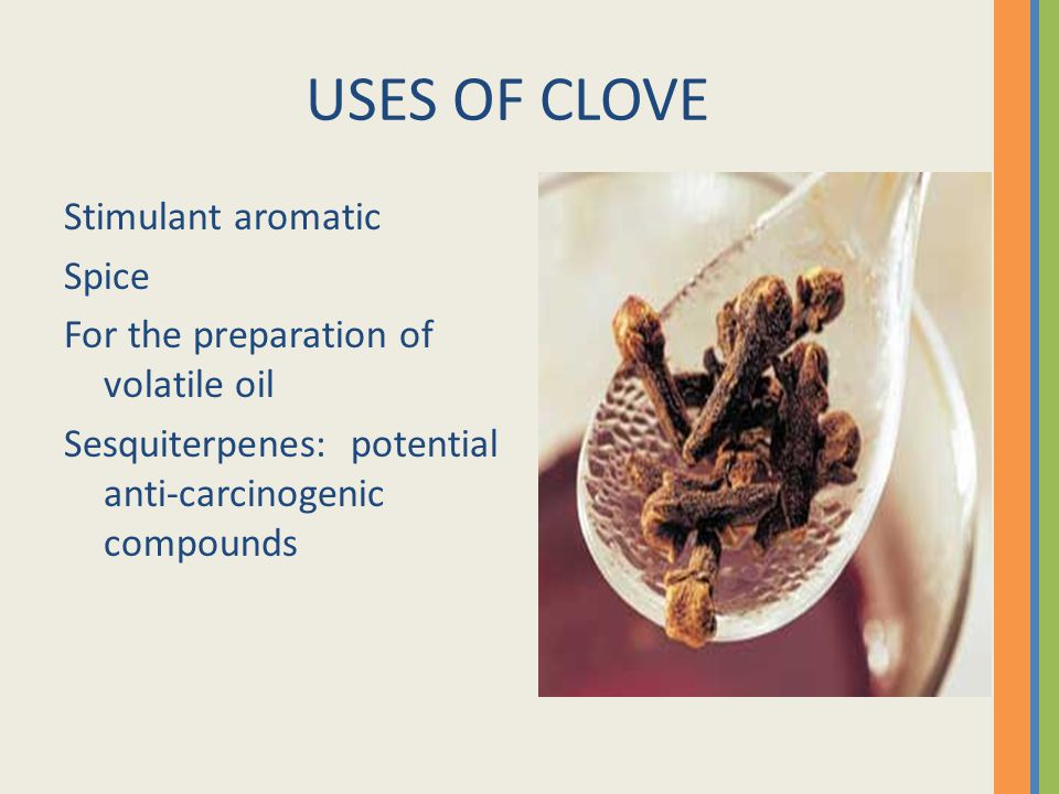 USES OF CLOVE Stimulant aromatic Spice