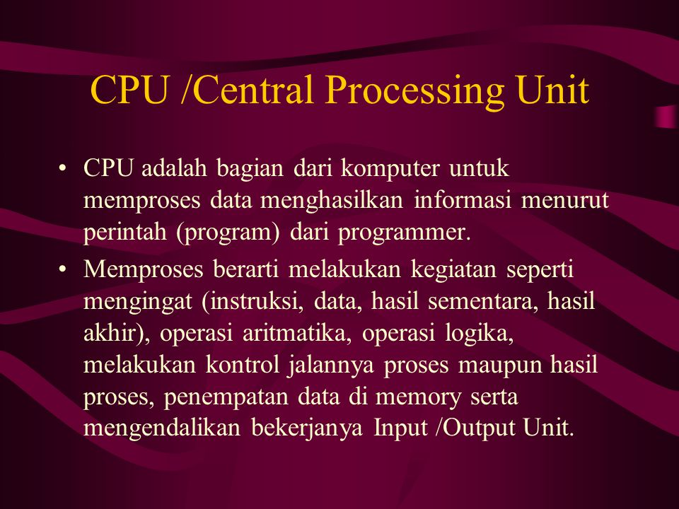 CPU /Central Processing Unit