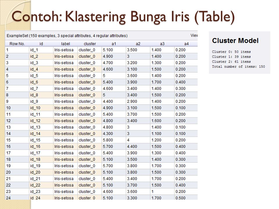 Contoh: Klastering Bunga Iris (Table)