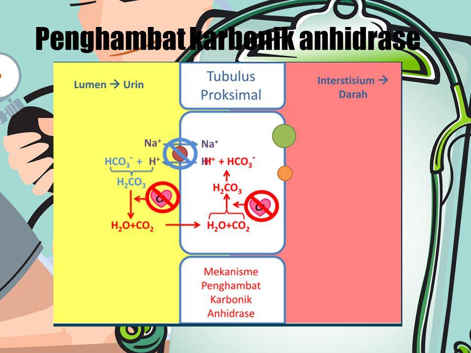 Penghambat karbonik anhidrase