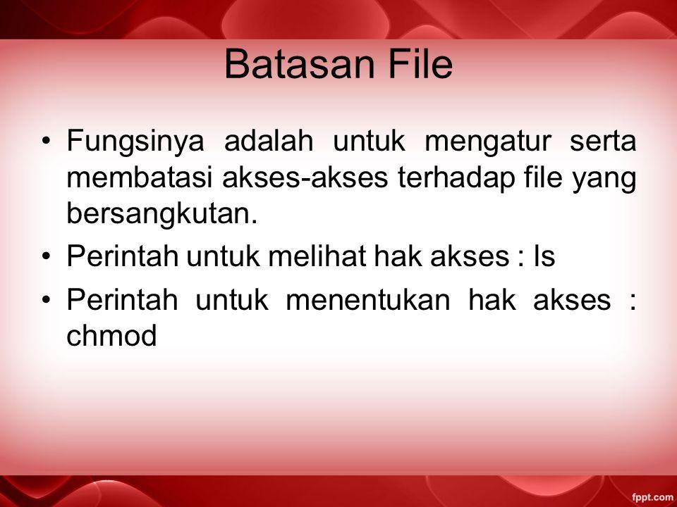 Batasan File Fungsinya adalah untuk mengatur serta membatasi akses-akses terhadap file yang bersangkutan.