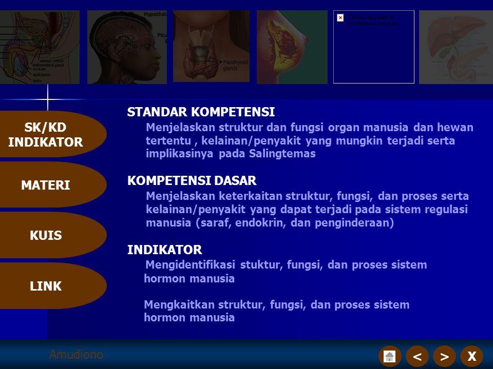 SK/KD INDIKATOR MATERI KUIS LINK < > X