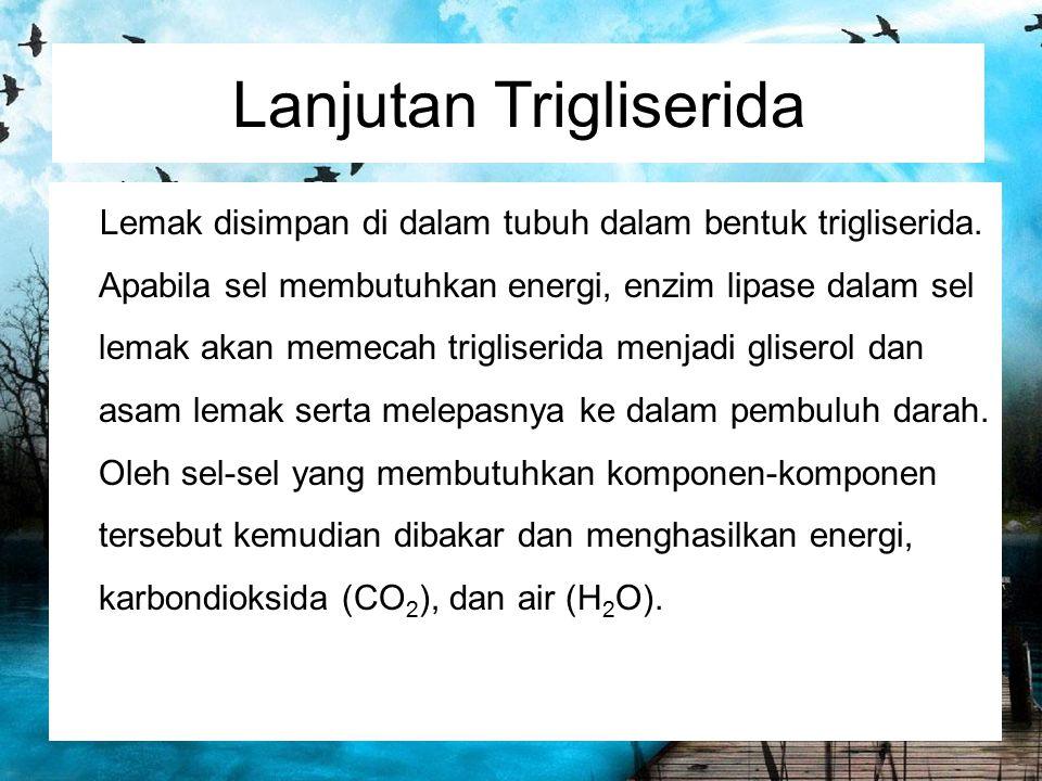 Lanjutan Trigliserida