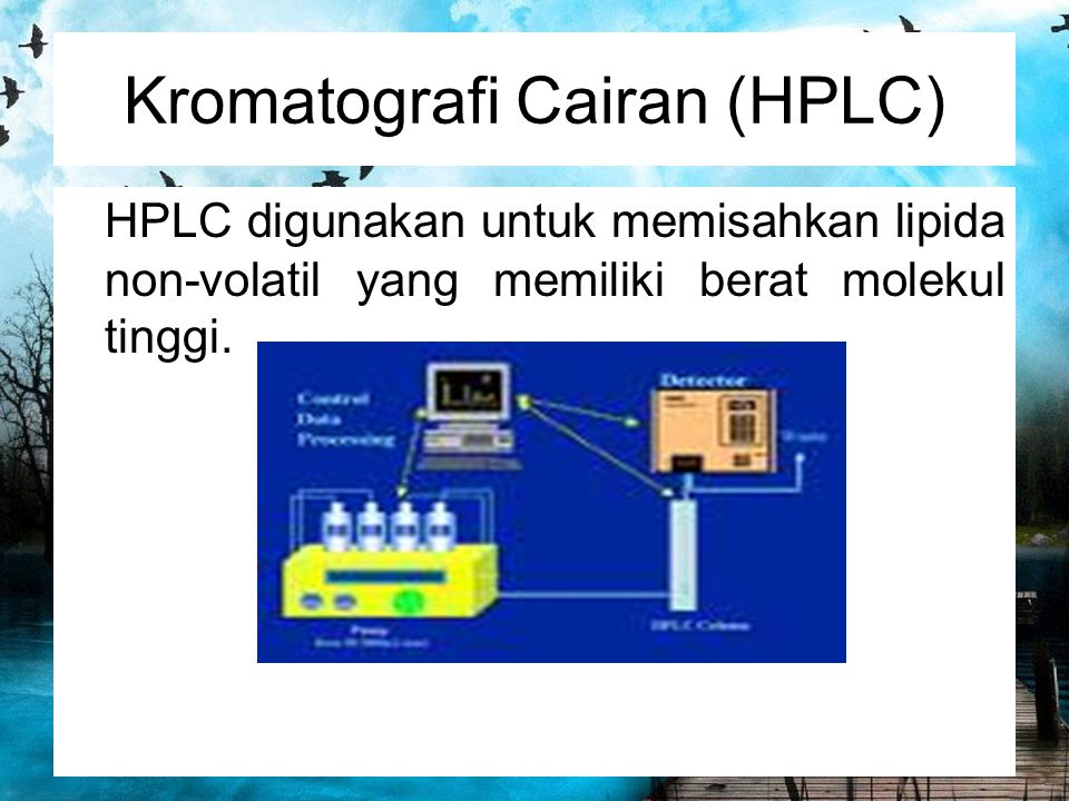 Kromatografi Cairan (HPLC)