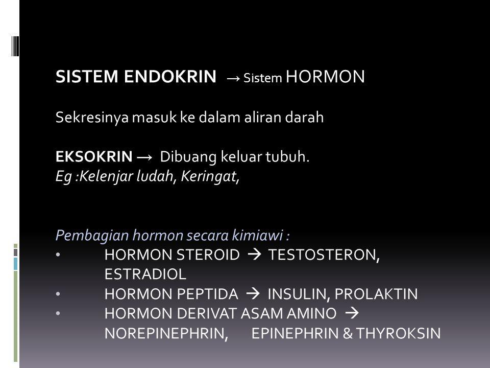 SISTEM ENDOKRIN → Sistem HORMON