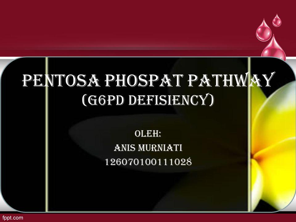 PENTOSA PHOSPAT PATHWAY (G6PD DEFISIENCY)