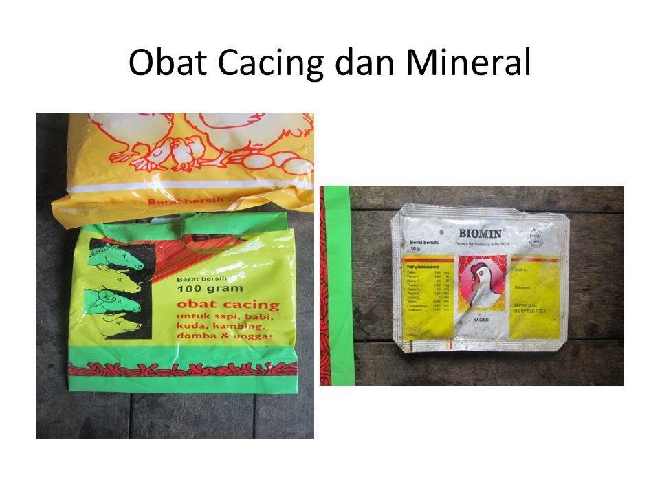 Obat Cacing dan Mineral