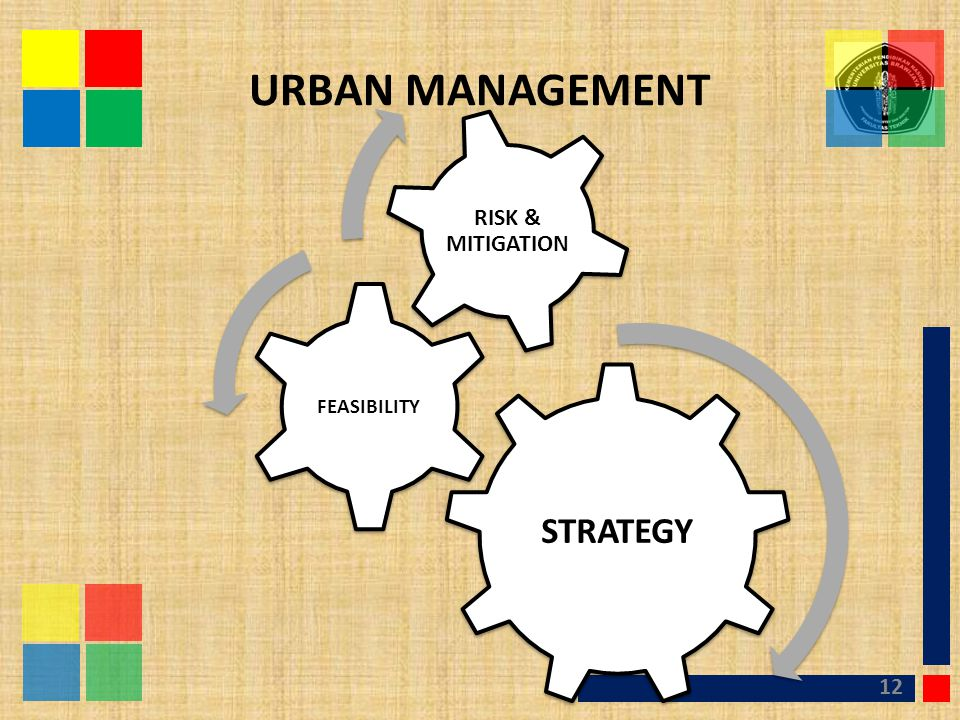 URBAN MANAGEMENT STRATEGY FEASIBILITY RISK & MITIGATION