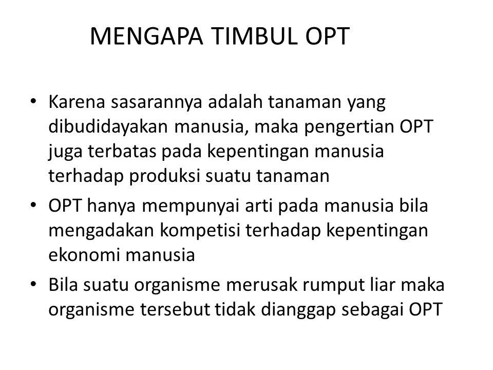 MENGAPA TIMBUL OPT