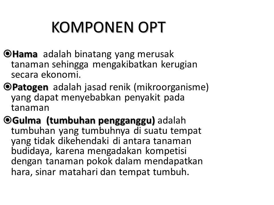 KOMPONEN OPT Hama adalah binatang yang merusak tanaman sehingga mengakibatkan kerugian secara ekonomi.