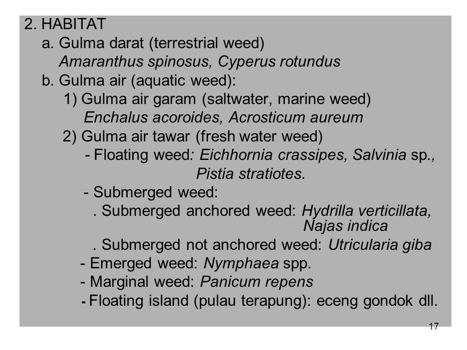 a. Gulma darat (terrestrial weed)