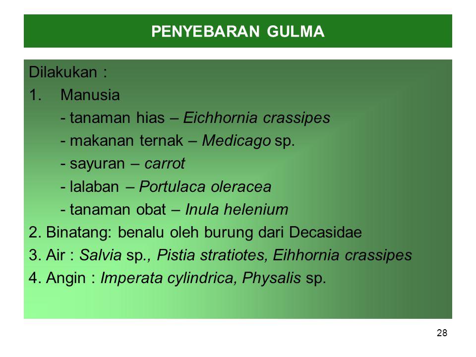 PENYEBARAN GULMA Dilakukan : Manusia. - tanaman hias – Eichhornia crassipes. - makanan ternak – Medicago sp.