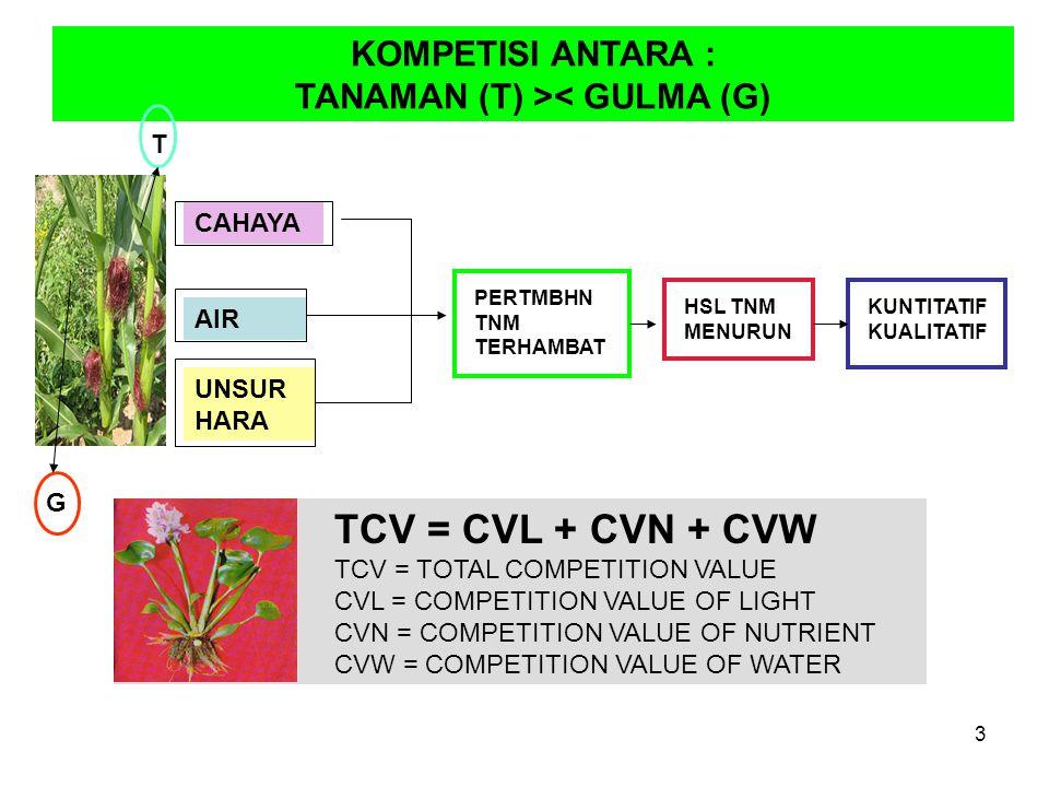 TANAMAN (T) >< GULMA (G)