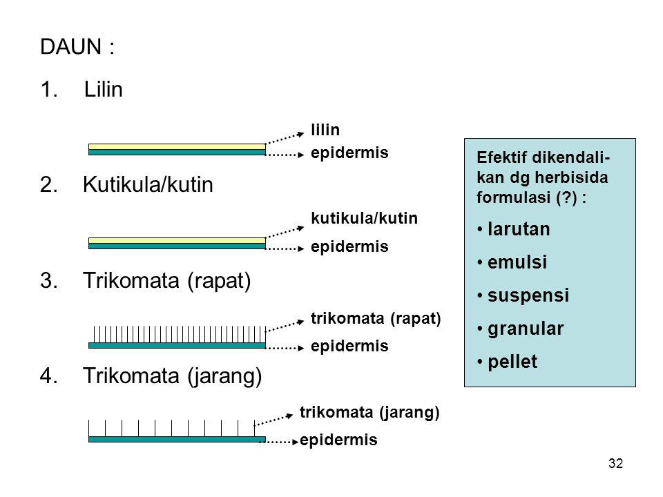DAUN : Lilin 2. Kutikula/kutin 3. Trikomata (rapat)