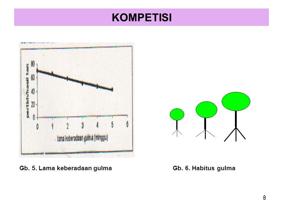 KOMPETISI Gb. 5. Lama keberadaan gulma Gb. 6. Habitus gulma