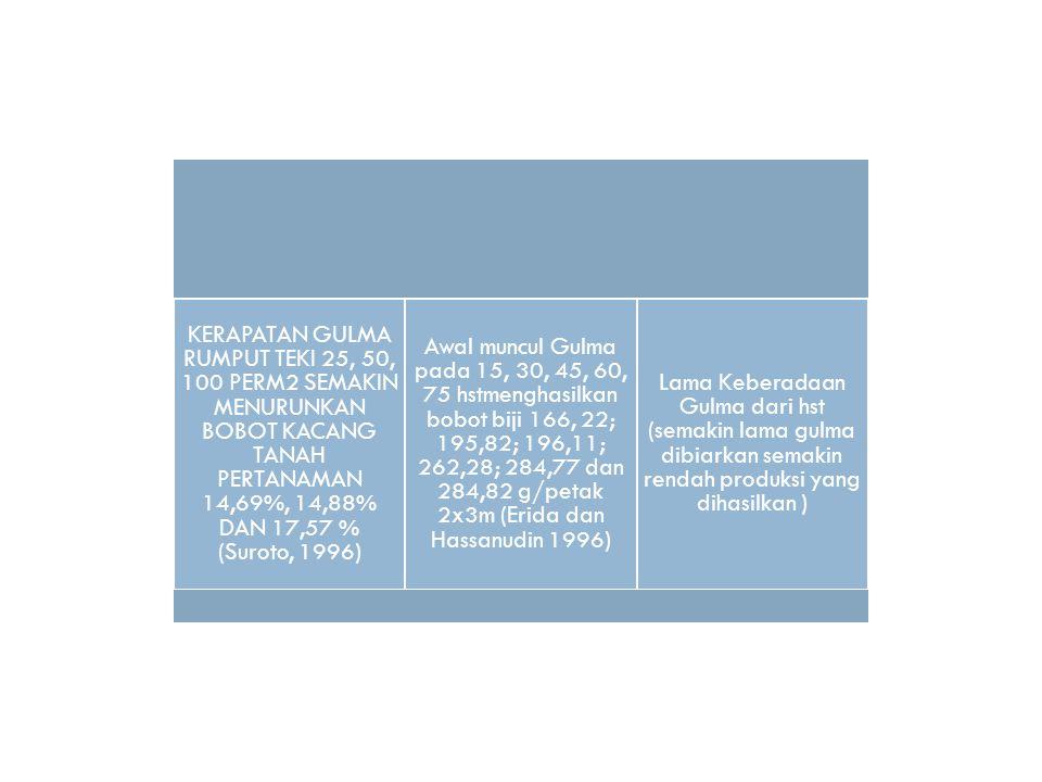 KERAPATAN GULMA RUMPUT TEKI 25, 50, 100 PERM2 SEMAKIN MENURUNKAN BOBOT KACANG TANAH PERTANAMAN 14,69%, 14,88% DAN 17,57 % (Suroto, 1996)