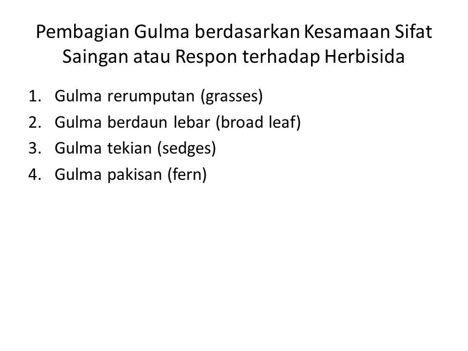 Pembagian Gulma berdasarkan Kesamaan Sifat Saingan atau Respon terhadap Herbisida
