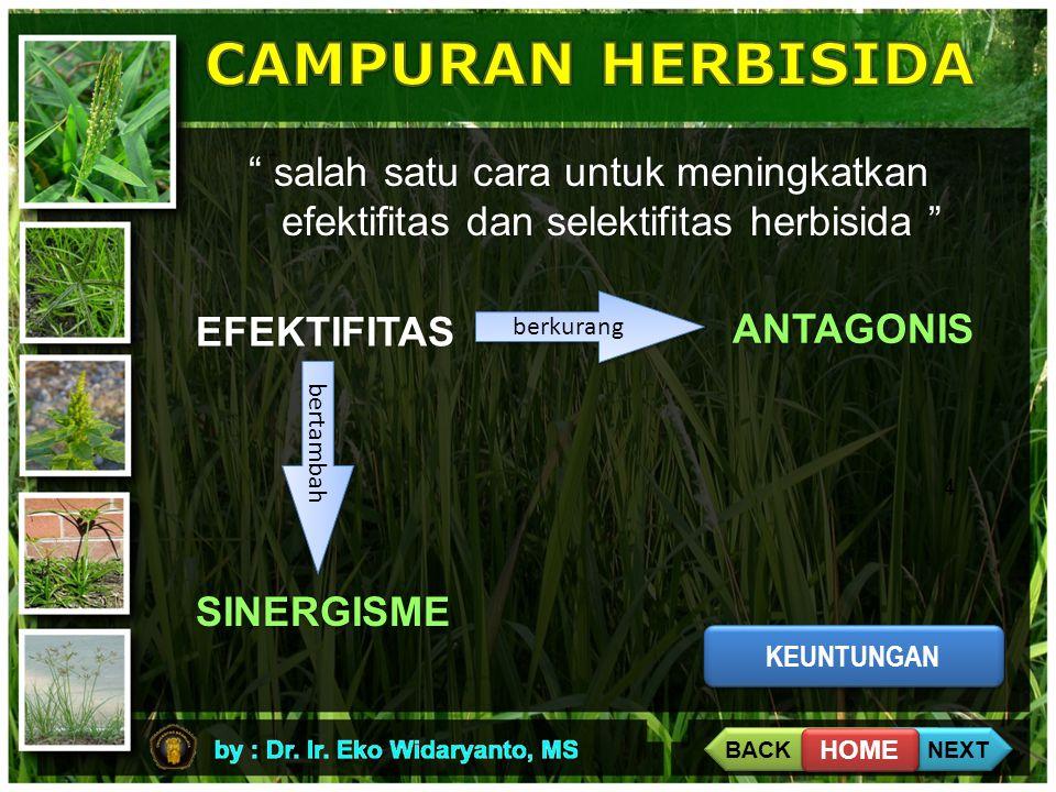CAMPURAN HERBISIDA salah satu cara untuk meningkatkan efektifitas dan selektifitas herbisida berkurang.