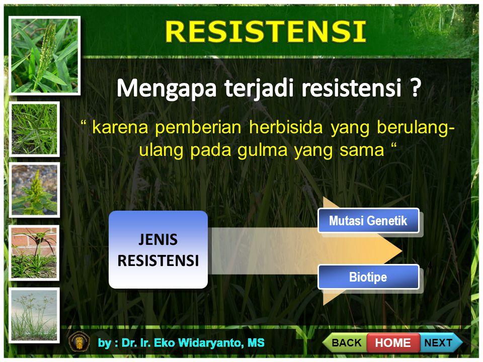 Mengapa terjadi resistensi