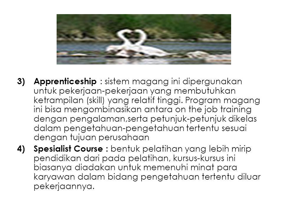 Apprenticeship : sistem magang ini dipergunakan untuk pekerjaan-pekerjaan yang membutuhkan ketrampilan (skill) yang relatif tinggi. Program magang ini bisa mengombinasikan antara on the job training dengan pengalaman,serta petunjuk-petunjuk dikelas dalam pengetahuan-pengetahuan tertentu sesuai dengan tujuan perusahaan