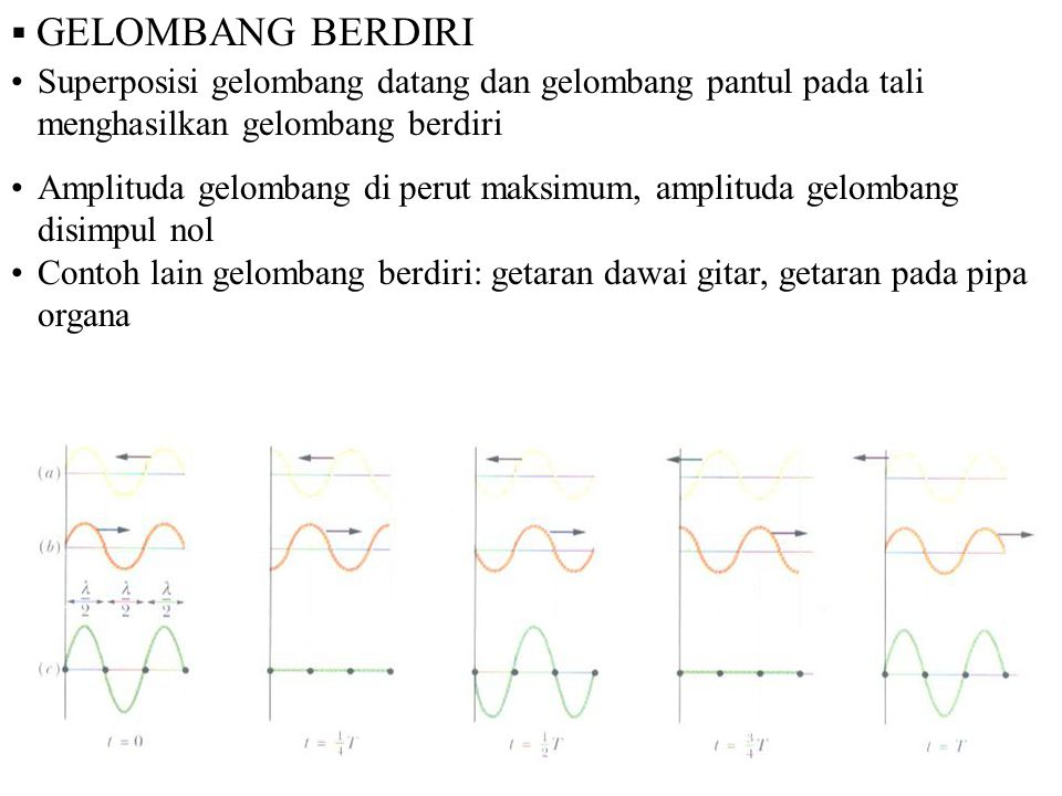 GELOMBANG BERDIRI Superposisi gelombang datang dan gelombang pantul pada tali menghasilkan gelombang berdiri.