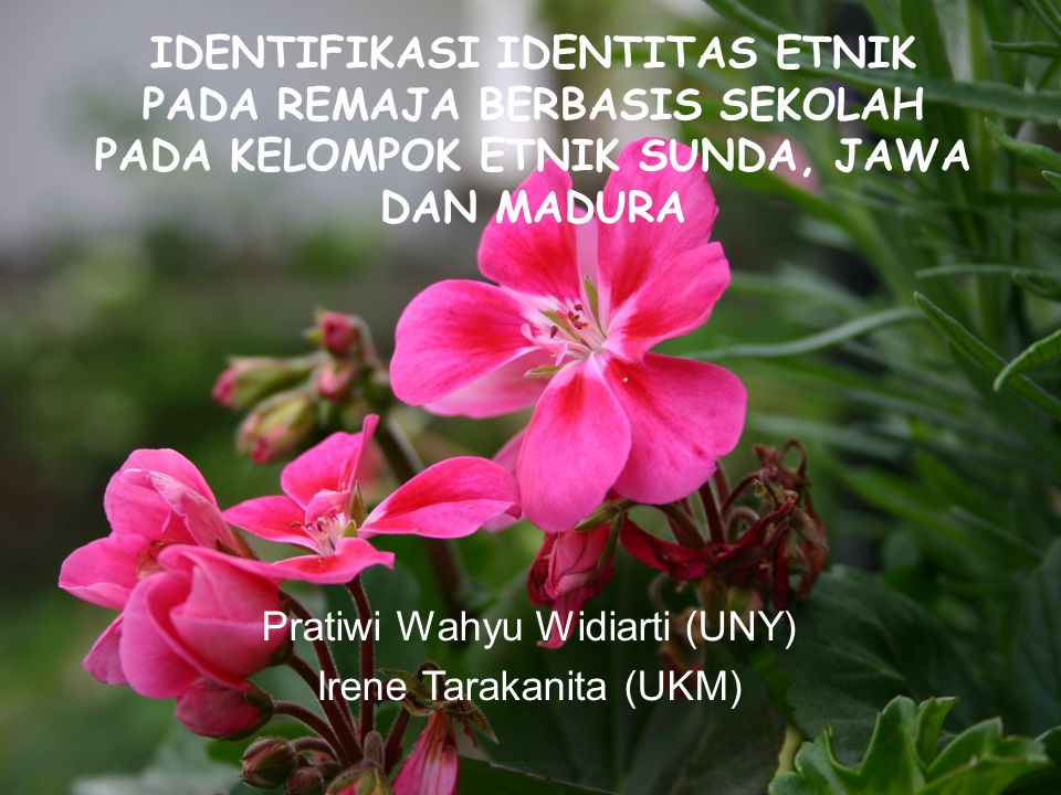 Pratiwi Wahyu Widiarti (UNY) Irene Tarakanita (UKM)