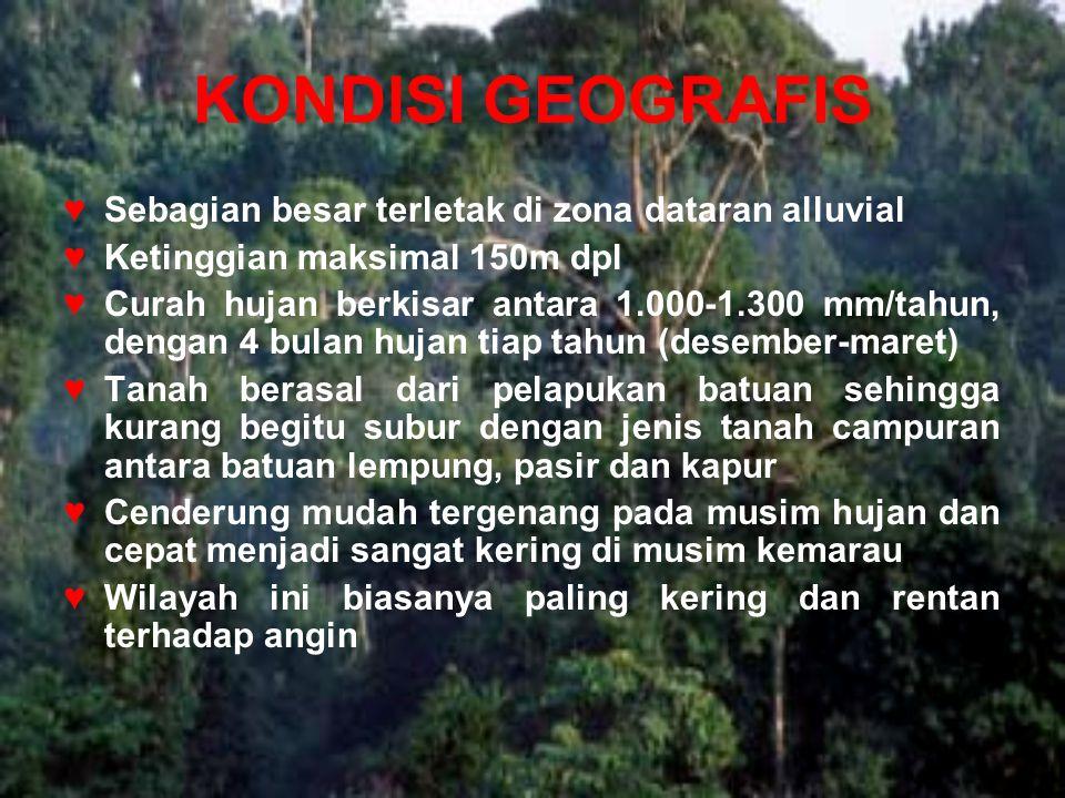 KONDISI GEOGRAFIS Sebagian besar terletak di zona dataran alluvial