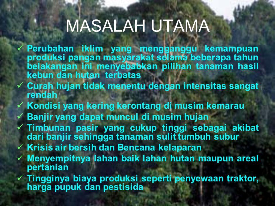 MASALAH UTAMA