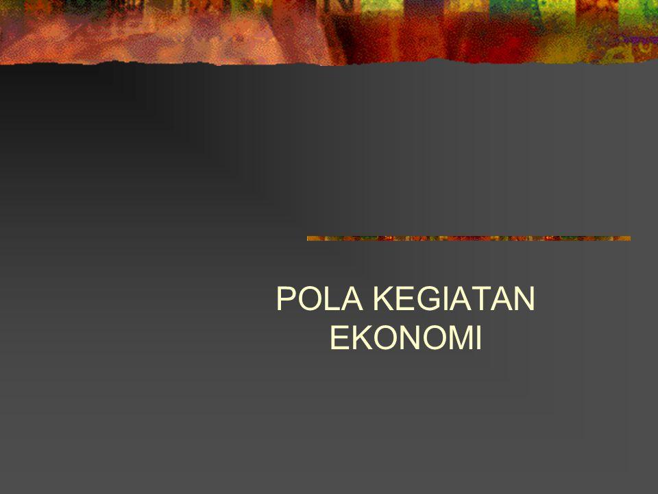 POLA KEGIATAN EKONOMI