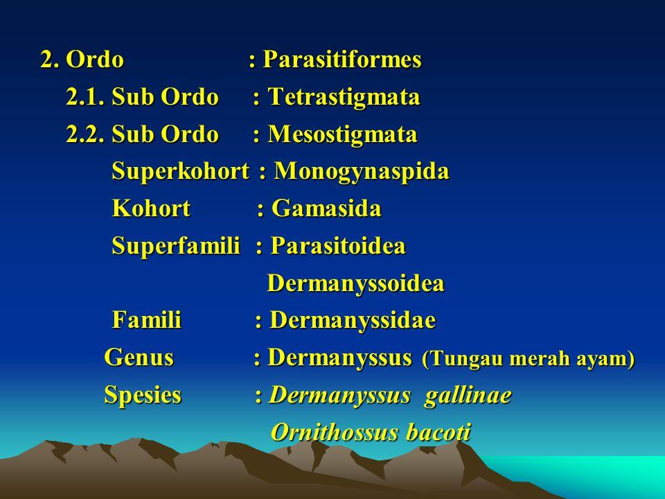 2. Ordo : Parasitiformes 2.1. Sub Ordo : Tetrastigmata. 2.2. Sub Ordo : Mesostigmata.