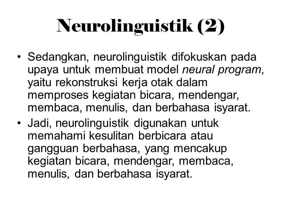 Neurolinguistik (2)