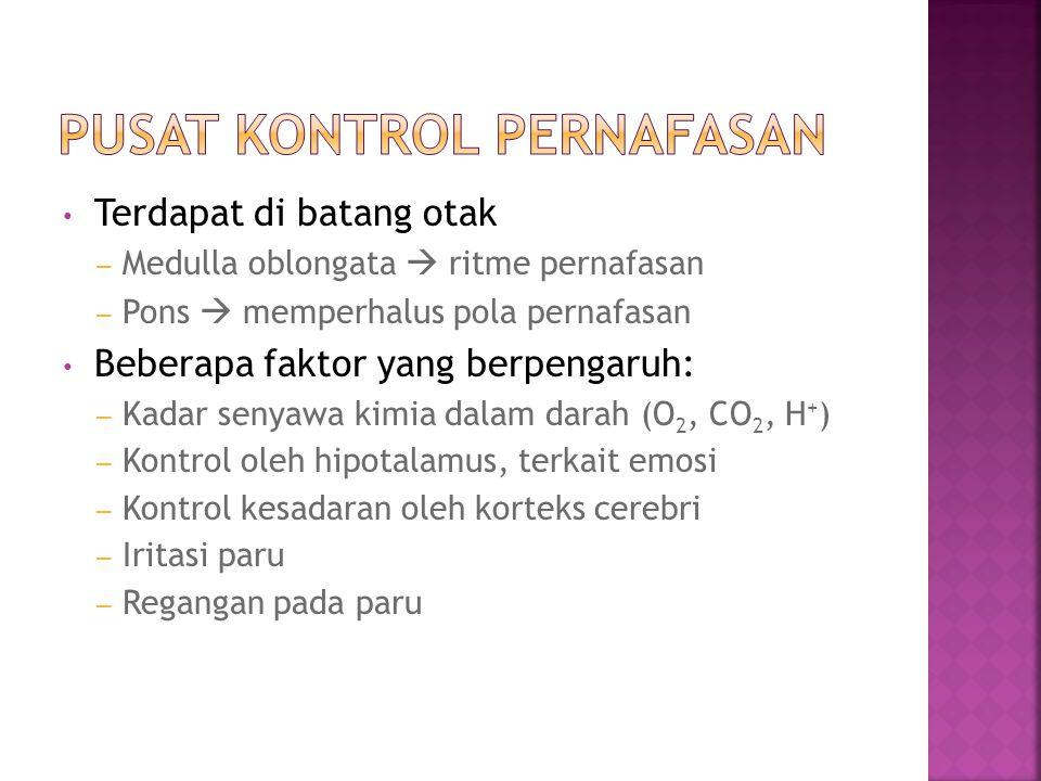 Pusat Kontrol Pernafasan