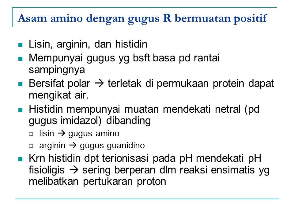 Asam amino dengan gugus R bermuatan positif