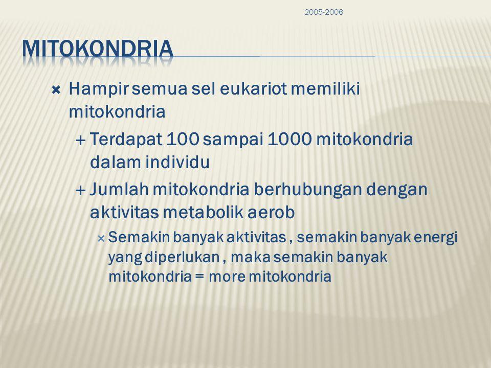 MitoKondria Hampir semua sel eukariot memiliki mitokondria
